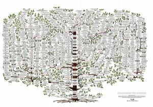 Stammbaum_der_Medizin
