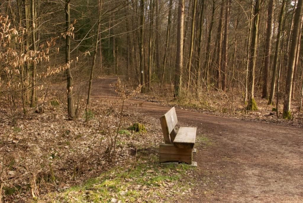 Holz-Parkbank im Wald