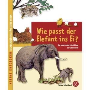 """Buchcover von """"Wie passt der Elefant ins Ei?"""""""