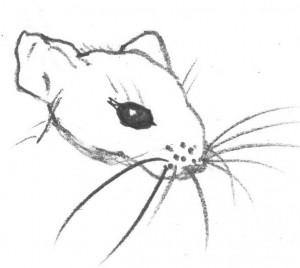 Maus-Zeichnung