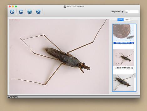 USB-Mikroskop_Bildschirmfoto